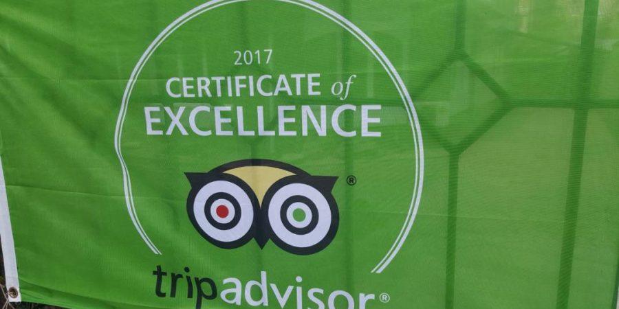 Сертификат Превосходства!